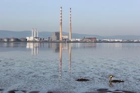 Bull Island, Dublin