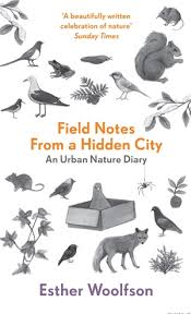 field notes hidden city